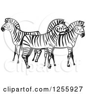 Clipart Of A Black And White Woodcut Group Of Zebras Royalty Free Vector Illustration by xunantunich