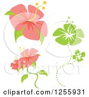 Clipart Of Pink And Green Hibiscus Flowers Royalty Free Vector Illustration by Amanda Kate
