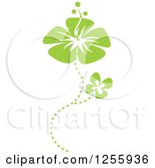 Clipart Of Green Hibiscus Flowers Royalty Free Vector Illustration