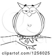Clipart Of A Black And White Owl On A Branch Royalty Free Vector Illustration by Hit Toon