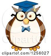 Wise Professor Owl