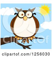 Clipart Of A Wise Professor Owl In Glasses On A Branch Royalty Free Vector Illustration