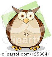 Clipart Of A Brown Owl Over Green Royalty Free Vector Illustration by Hit Toon