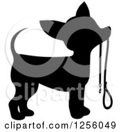 Black Silhouetted Chihuahua Dog Waiting With A Leash
