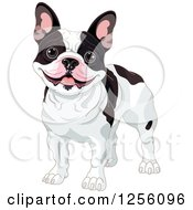 Clipart Of A Cute Black And White Happy French Bulldog Royalty Free Vector Illustration