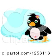 Cute Penguin With A Blue Cloud