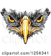 Clipart Of A Black Hawk Beak And Eyes Royalty Free Vector Illustration by Chromaco