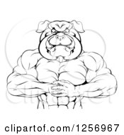 Clipart Of A Black And White Muscular Bulldog Man Punching One Fist Into A Palm Royalty Free Vector Illustration by AtStockIllustration