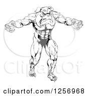 Black And White Muscular Bulldog Man Mascot Attacking