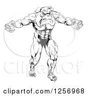 Clipart Of A Black And White Muscular Bulldog Man Mascot Attacking Royalty Free Vector Illustration