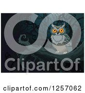 Clipart Of A Perched Owl In A Dark Forest Royalty Free Vector Illustration by Pushkin