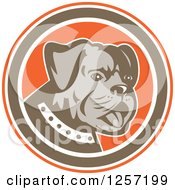Retro Cute Bulldog In An Orange Brown And White Circle