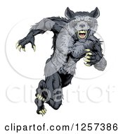 Clipart Of A Gray Muscular Wolf Man Sprinting Or Running Upright Royalty Free Vector Illustration