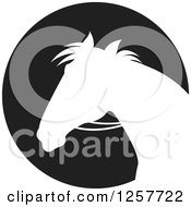Clipart Of A White Silhouetted Horse With Reins Over A Black Circle Royalty Free Vector Illustration