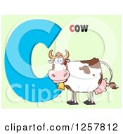 Clipart Of A Happy Cow Over Letter C And Text On Green Royalty Free Vector Illustration by Hit Toon
