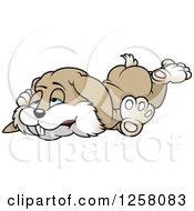 Clipart Of A Tired Brown Bunny Rabbit Royalty Free Vector Illustration by dero