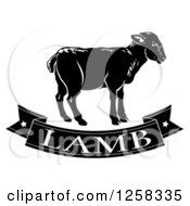 Clipart Of A Black And White Banner And Lamb Royalty Free Vector Illustration