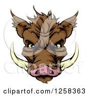 Brown Aggressive Boar Mascot Face