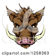 Clipart Of A Brown Aggressive Boar Mascot Face Royalty Free Vector Illustration by AtStockIllustration