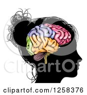 Clipart Of A Silhouetted Womans Head With A Visual Brain Royalty Free Vector Illustration