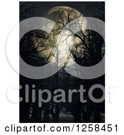 Clipart Of A 3d Full Moon Through Bare Trees Royalty Free Illustration