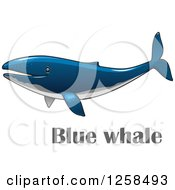 Clipart Of A Blue Whale Over Text Royalty Free Vector Illustration