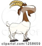 Clipart Of A Red And White Male Boer Goat Buck With A Goatee Royalty Free Vector Illustration