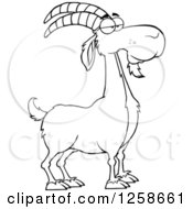 Clipart Of A Black And White Male Boer Goat Buck Royalty Free Vector Illustration by Hit Toon