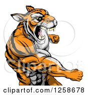 Clipart Of A Mad Muscular Tiger Man Punching Royalty Free Vector Illustration by AtStockIllustration