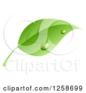 Clipart Of A Dewy Green Leaf Royalty Free Vector Illustration by KJ Pargeter