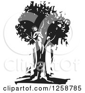 Clipart Of A Black And White Woodcut Dryad Tree Spirit Royalty Free Vector Illustration by xunantunich