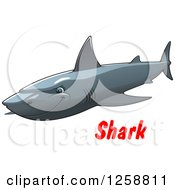 Gray Shark Over Text