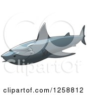Clipart Of A Gray Shark Royalty Free Vector Illustration