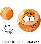 Clipart Of Oranges Royalty Free Vector Illustration by Vector Tradition SM