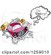 Talking Car Washing Itself