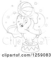 Black And White Cute Circus Elephant Balancing A Ball