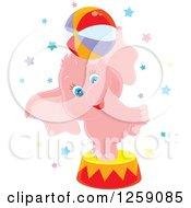 Cute Pink Circus Elephant Balancing A Ball
