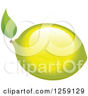 Clipart Of A Lemon Or Lime With A Leaf Royalty Free Vector Illustration by Pushkin