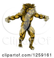 Clipart Of A Muscular Angry Lion Man Roaring With Claws Bared Royalty Free Vector Illustration