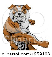 Clipart Of An Angry Muscular Bulldog Man Punching Royalty Free Vector Illustration by AtStockIllustration