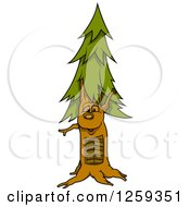 Clipart Of A Conifer Tree Character Royalty Free Vector Illustration
