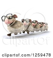 Clipart Of A 3d Group Of Sheep Running In Line With Glasses Royalty Free Illustration