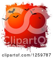 Clipart Of A Grungy Red Halloween Background With A Spider Web And Vampire Bats Bordered In White Royalty Free Vector Illustration by KJ Pargeter