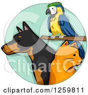 Clipart Of A Parrot Ginger Cat And Doberman Dog Royalty Free Vector Illustration by BNP Design Studio