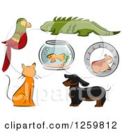 Clipart Of A Parrot Iguana Fish Bowl Hamster Ginger Cat And Dachshund Dog Royalty Free Vector Illustration by BNP Design Studio