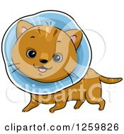 Clipart Of A Happy Brown Cat Wearing An Elizabethan Collar Royalty Free Vector Illustration