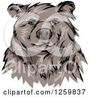 Clipart Of A Grizzly Bear Mascot Royalty Free Vector Illustration