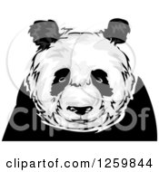 Clipart Of A Panda Mascot Royalty Free Vector Illustration