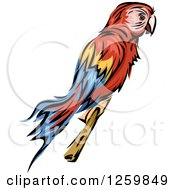 Clipart Of A Rainbow Macaw Parrot Mascot Royalty Free Vector Illustration by BNP Design Studio