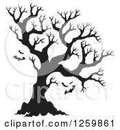 Clipart Of A Black Silhouetted Bare Tree With Flying Bats Royalty Free Vector Illustration